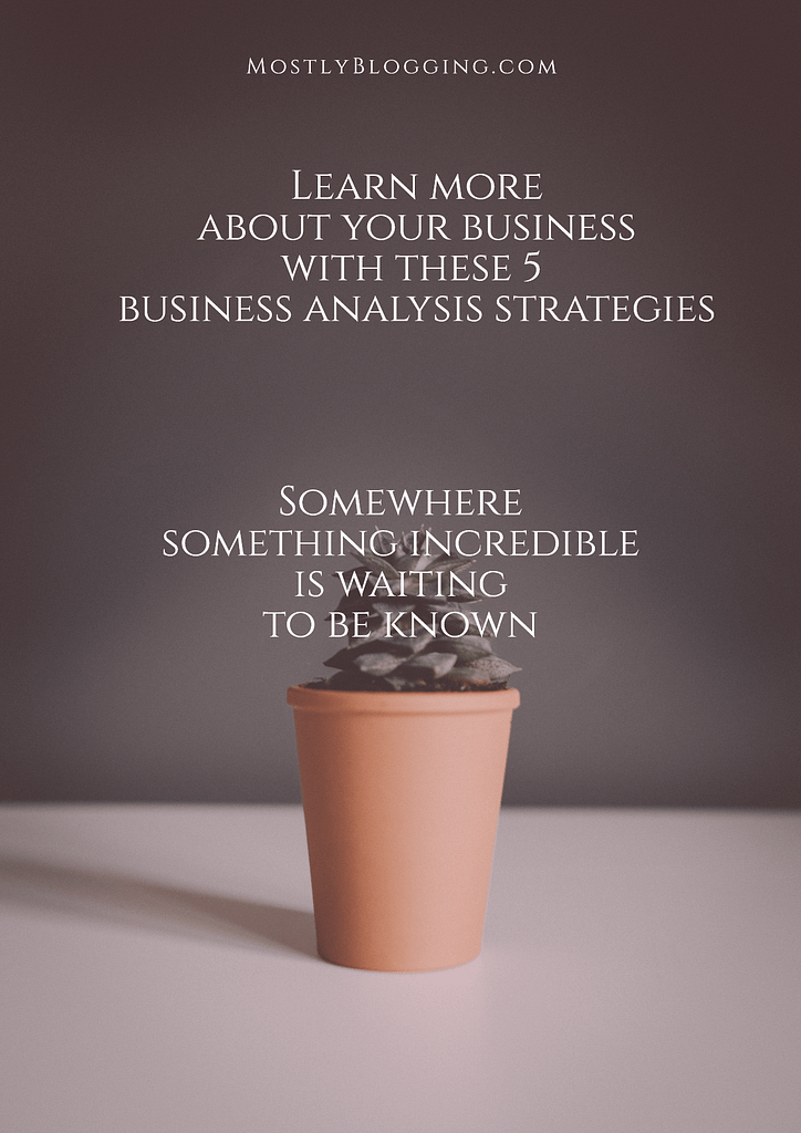 5 business analysis tips
