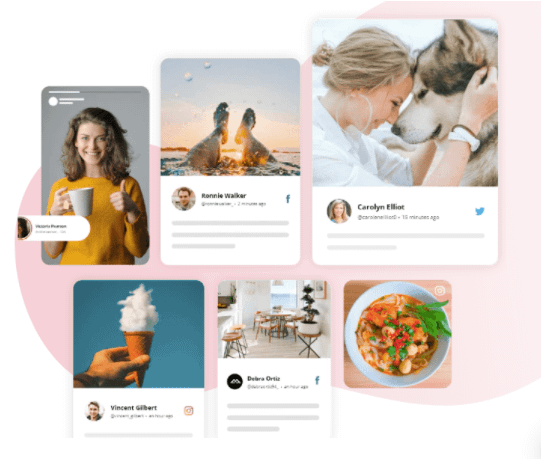 curated Instagram feed