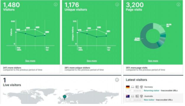 web analyzer visitor analytics