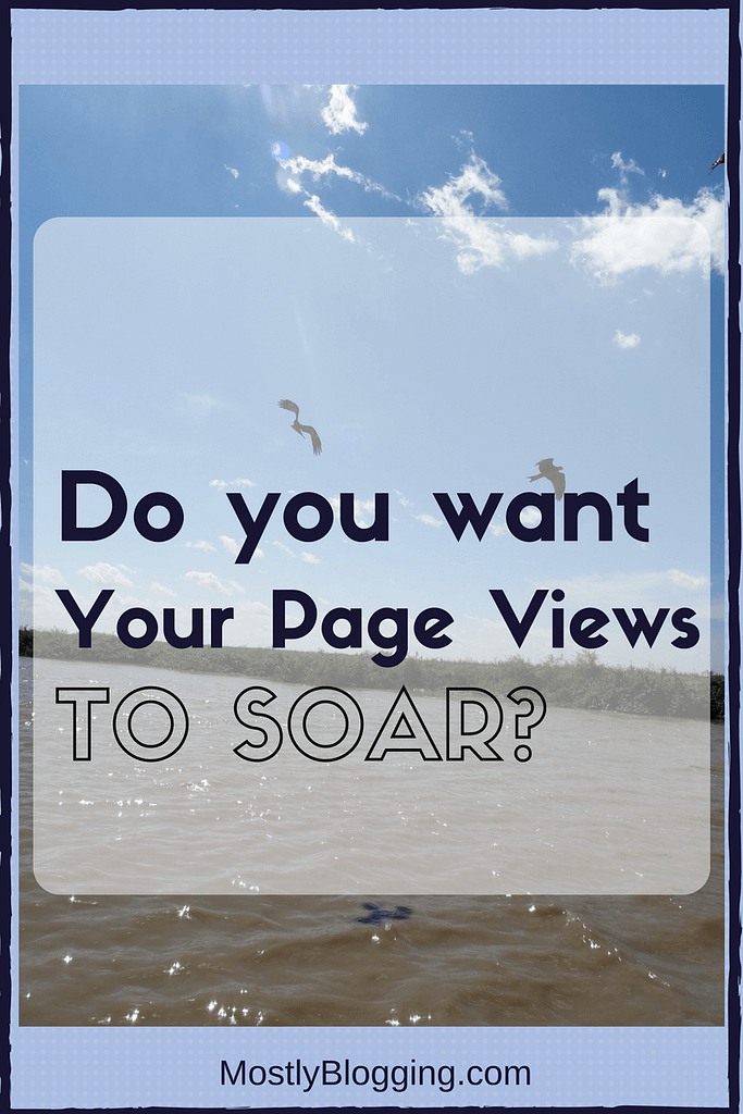 Are many page views more important than many comments? From Mostly Blogging