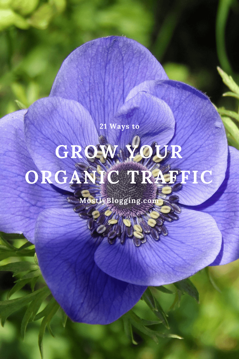 Grow Your Organic Traffic with these 21 tips
